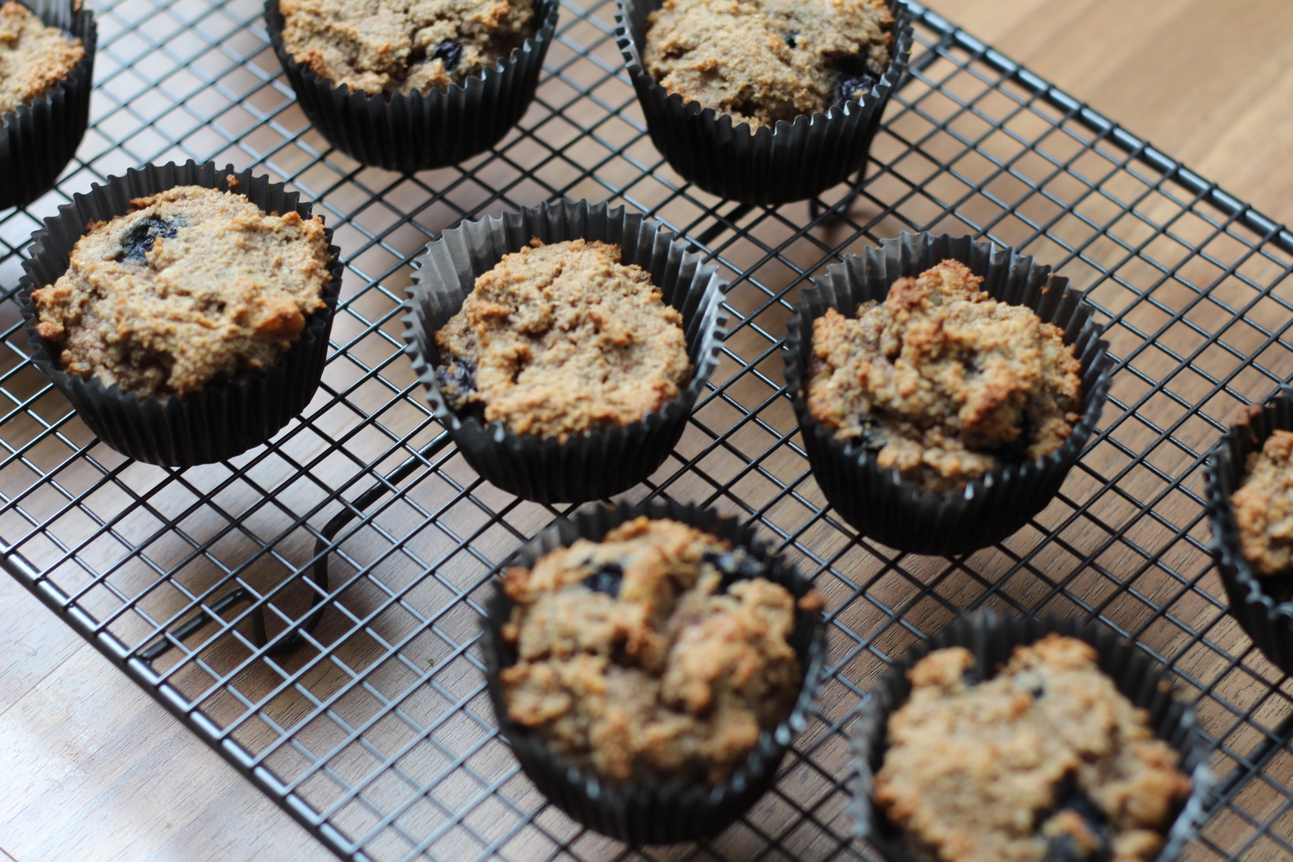 Blueberry Walnut Paleo Muffins